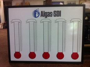 quintuple goal thermometer